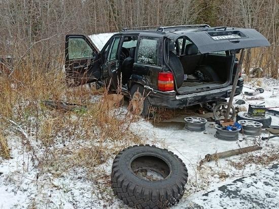 Машину буквально выпотрошили: подростки разгромили чужое авто в Лабытнанги