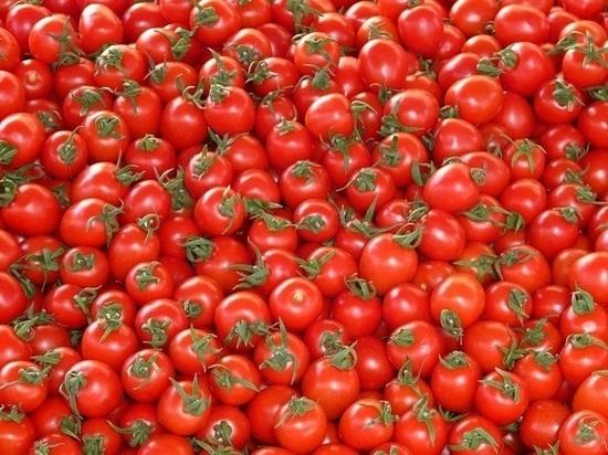 В Ставропольском крае подорожали помидоры: на 43 % за месяц