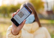 Придётся «помучиться»: как повлияет на псковский бизнес ввод QR-кодов и кто их будет проверять