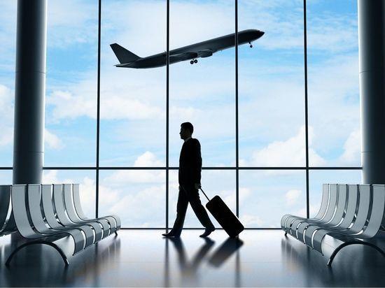 В Гатчинском районе планируют построить аэропорт