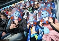 В «Зените» рассказали о мерах экологической безопасности на стадионе