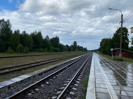За девять месяцев на железной дороге в Тверской области погибли шесть человек