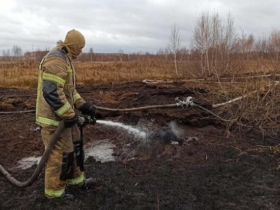 11 природных пожаров действуют в Свердловской области