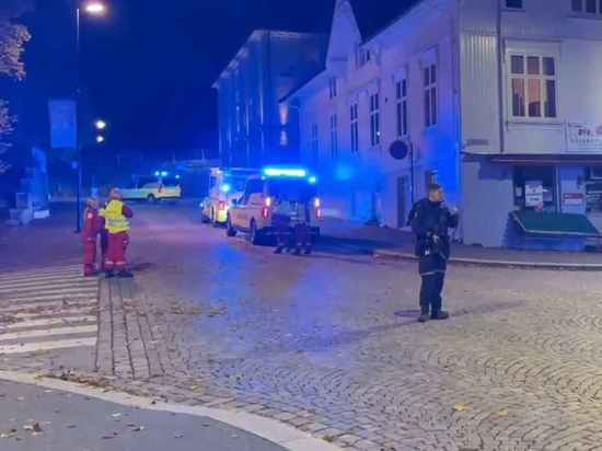 Полиция: подозреваемый действовал в одиночку