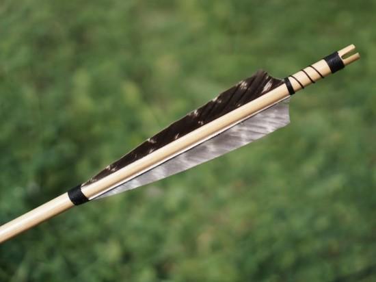 В Норвегии жертвами стрелка из лука стали четыре человека