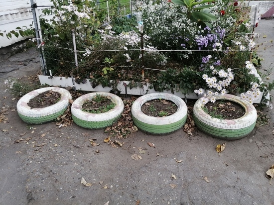 Согласно новому закону, покрышечные клумбы должны быть изгнаны из дворов краевого центра