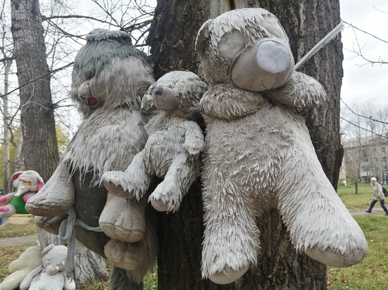 Истерзанные плюшевые звери с выколотыми глазами висят на деревьях прямо во дворе жилого дома