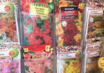 В Кимрах Тверской области провели проверку на рынке
