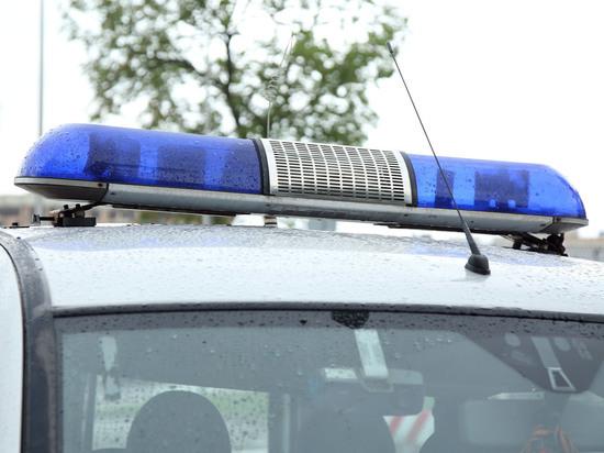 У блогера, сбившей ребенка, нашли десятки штрафов за превышение скорости
