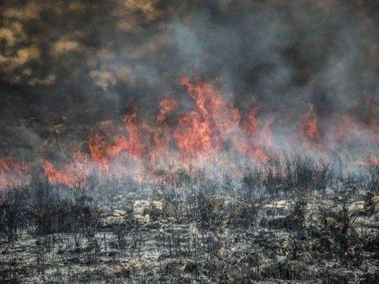 На севере Омской области сильно горят торфяники