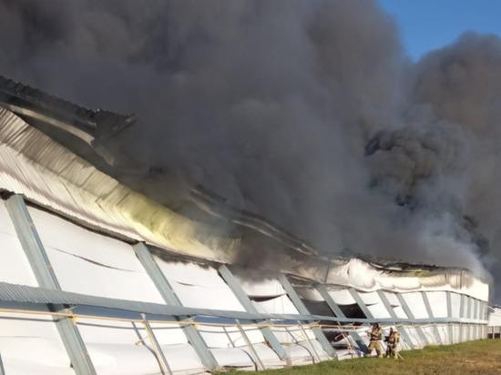 В Параньгинском районе Марий Эл локализован пожар на птицефабрике