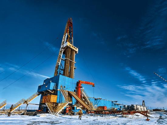 Запрет на бурение в Арктике. Противостояние экологов и промышленников