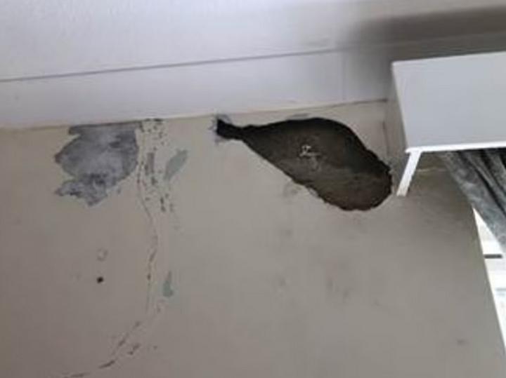 Британские военные пожаловались на служебные квартиры с плесенью