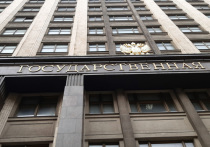 Государственная дума в первом чтении приняла законопроект, запрещающий списывать единовременные социальные выплаты за долги
