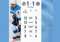 В гостях у финской команды, как и предсказывали спортивные эксперты, «Сибири» пришлось чрезвычайно сложно: скорости команд (а финны считаются самой скоростной командой лиги) просто несопоставимы, а реализация голевых моментов у сибиряков в последнее время оставляет желать лучшего.