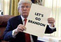 Поклонники Трампа обрели новый слоган