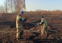 Дополнительно 30 человек выделено для тушения тлеющего торфяника на юге Екатеринбурга