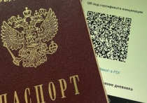 В Красноярском крае треть местных жителей поддерживают идею введения QR-кодов на территории региона. По их мнению, это поможет остановить распространение коронавирусной инфекции и мотивирует красноярцев поставить прививки.