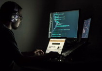 Эксперт Сизов: аферисты могут создать к переписи населения дублеры сайта Госуслуг