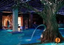 В этом году рязанский акваклуб «Акапулько» отмечает 12-летие
