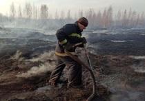 С начала тушения тления на торфяниках, располагающихся на юге Екатеринбурга, пожарные вылили 13 тысяч тонн воды