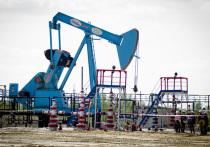 ПАО НК «РуссНефть» продолжает осуществление совместного образовательного проекта с Российским государственным университетом нефти и газа им