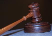 Суд апелляционной инстанции согласился с доводами прокуратуры Томской области о законности обвинительного приговора 59-летней жительнице Колпашевского района.