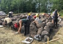 Масштабную археологическую экспедицию завершили в Усвятах