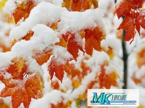 первые небольшие снегопады ожидают ярославцев на грядущей неделе