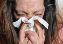 Германия: Прививка от гриппа также важна, как и прививка от коронавируса