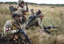 Украина давно должна была озаботиться разработкой плана по возвращению «оккупированного «Донбасса, заявил в статье на сайте «Главред» военный эксперт, полковник в запасе Олег Жданов