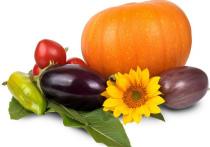 """Осень прекрасна тем, что щедро дарит """"живые витамины"""""""