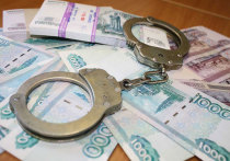 За попытку дать взятку полицейскому житель Мегета заплатит 600 тысяч