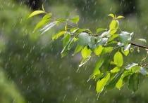 В понедельник на Кубани пройдут дожди с грозами