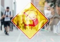 В России зафиксировано 34 325 случаев коронавируса