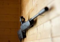 Инцидент в Пермском крае в поселке Сарс, где 12-летний ученик пришел в школу с огнестрельным оружием, к счастью, обошелся без жертв