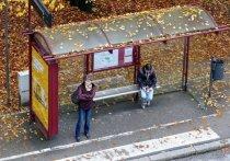 В Ряжске 28-летний мужчина хранил марихуану на автобусной остановке