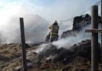 За сутки в Астраханской области произошло 17 пожаров