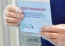 Два медработника больницы подмосковной Электростали, а также шесть подельников задержаны за продажу липовых сертификатов о вакцинации