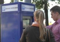 Платные парковки обойдутся бюджету Екатеринбурга в 113 миллионов, доход – 4 миллиона в 2021 году