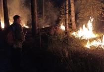 17 природных пожаров действуют в Свердловской области