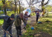 Активисты ЛНР высадили 45 «символов мира»