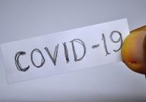 В ЛНР обнаружили новые агрессивные штаммы коронавируса