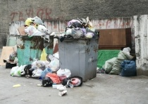 Депутат гордумы Максим Аршинцев предложил установить в частных секторах Читы максимальное количество бункеров под мусор