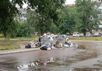 Две недели назад регоператор по обращению с твердыми коммунальными отходами «Олерон+» передал в администрацию Читы графики вывоза мусора с каждой контейнерной площадки
