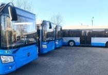 В Чите около 50 муниципальных автобусов простаивают в гаражах из-за отсутствия водителей