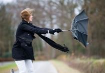 В Костроме будет ветрено