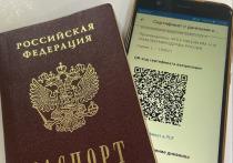 Вместо QR-кода в театры в Омске можно будет пройти и по бумажной справке о вакцинации