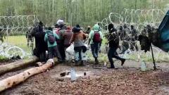 Пограничники пресекли прорыв афганских беженцев через польско-белорусскую границу