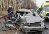В Рязани в ДТП  погибла 20-летняя девушка и пострадал грудной ребёнок